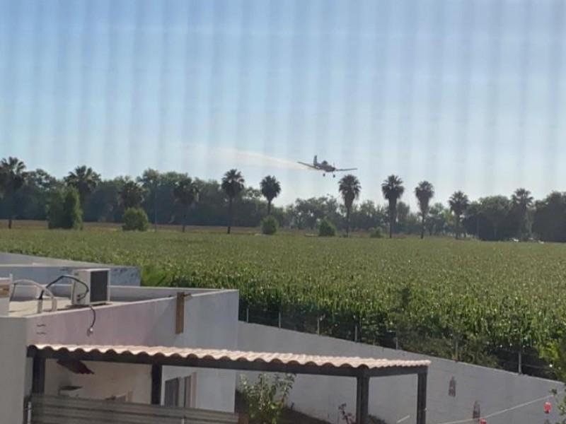 Denuncian afectaciones por avión fumigador en Privanzas
