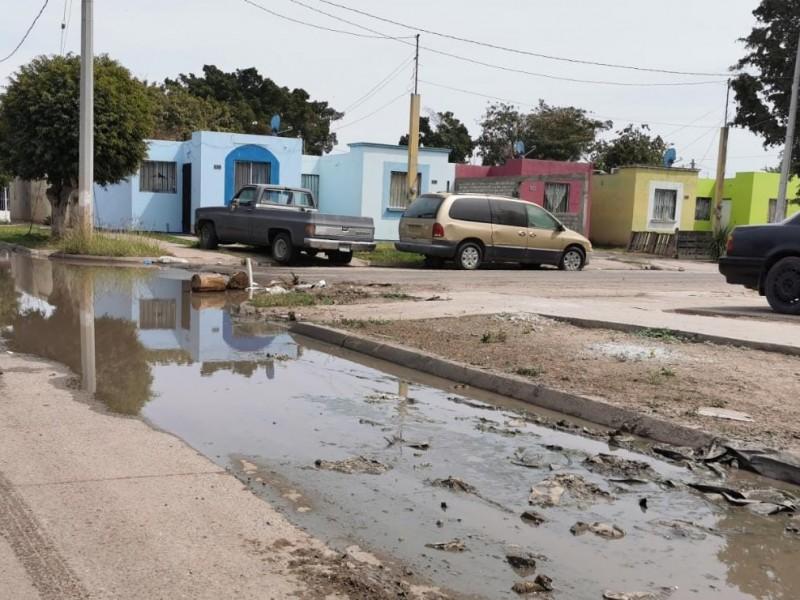 Denuncian bordos de asfalto y aguas negras en Fraccionamiento Praderas