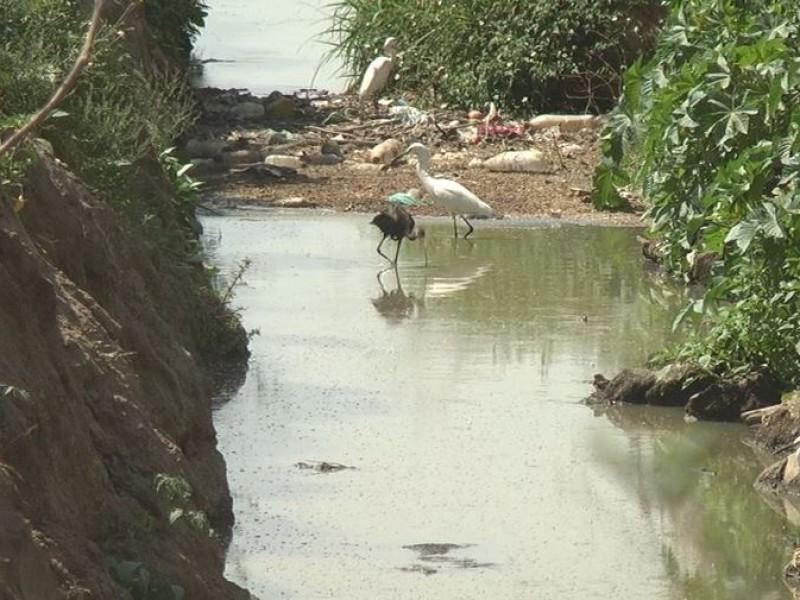 Denuncian contaminación y sobreexplotación de mantos acuíferos en Santa Cruz
