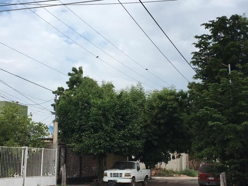 Reportan  fallas en alumbrado público en Fraccionamiento UAS