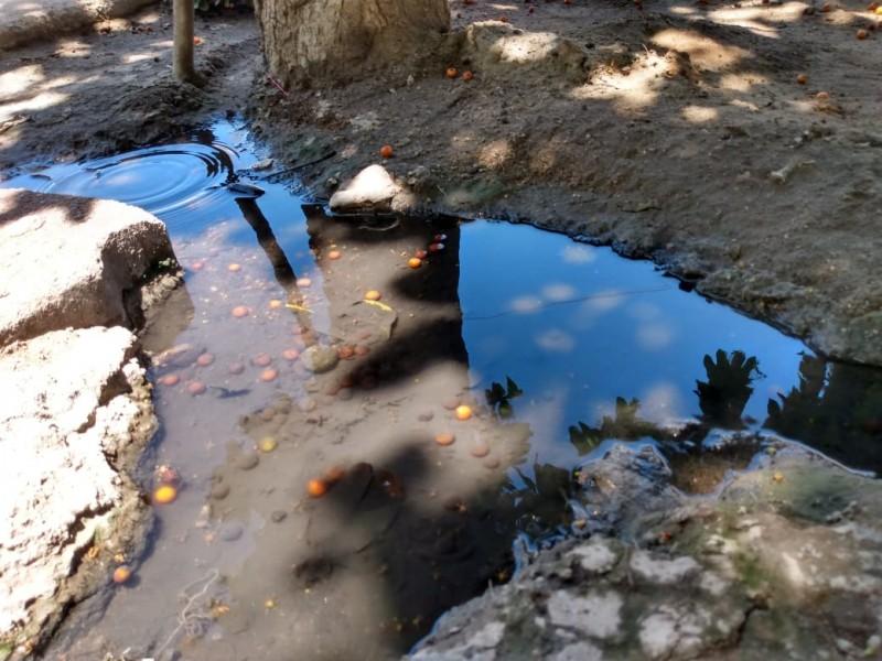 Denuncian falta de agua en colonias de Empalme