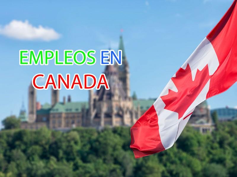 Denuncian fraudes de supuesta ayuda para conseguir trabajo en Canadá