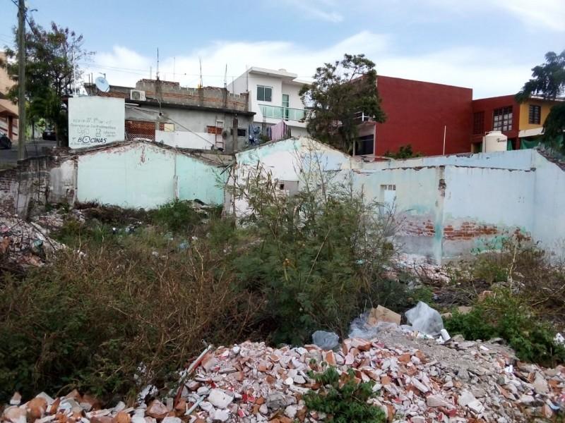 Denuncian las malas condiciones de un terreno abandonado en Veracruz