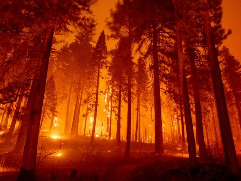 Desalojan a pacientes de hospital debido a incendio en California