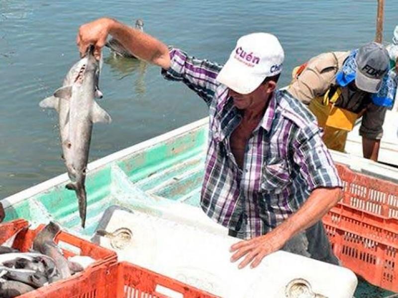 Desaparecen tres pescadores de tiburón en Huatabampo