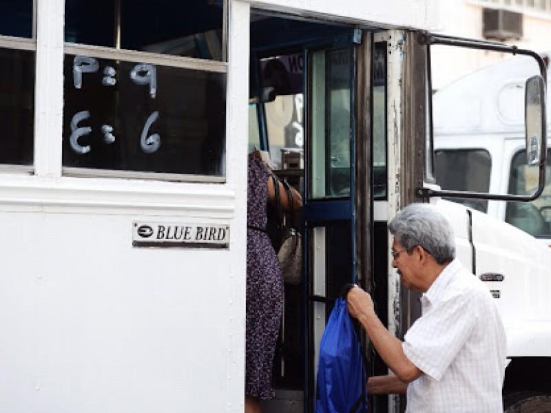 Desaparecen tres rutas de transporte en Veracruz