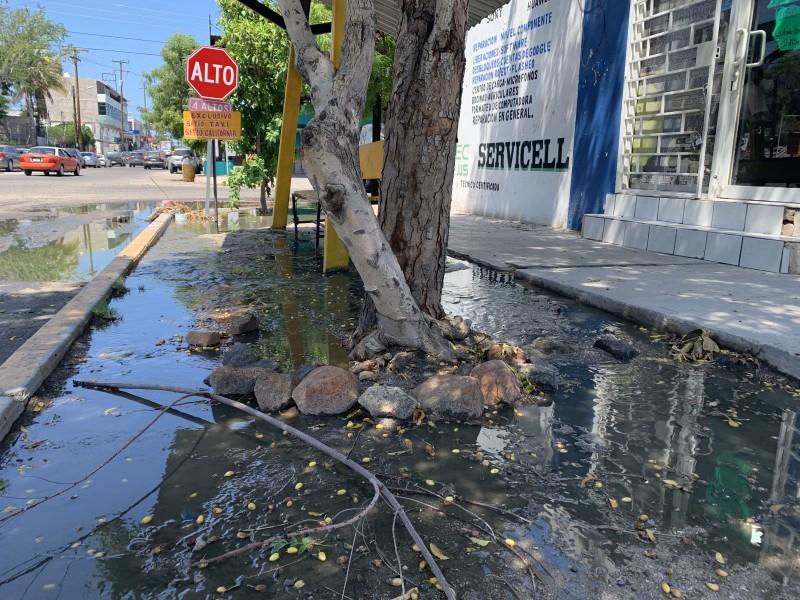 Desborde de aguas negras en el centro histórico