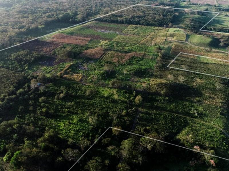 Descubren recintos mayas y olmecas bajo el suelo de Veracruz