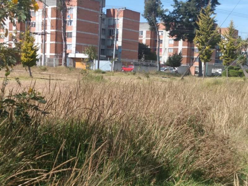 Descuidan autoridades parque en Toluca.
