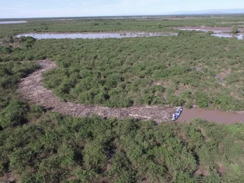 Destruirán taponamiento en río San Pedro que provocaba inundaciones