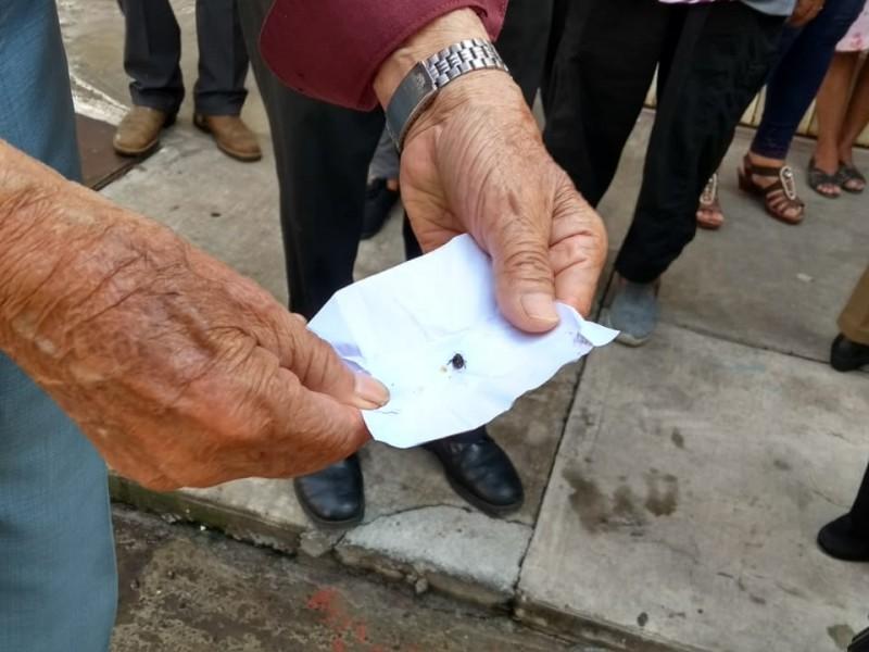 Detectan brote de chinches en colonia Zamorana