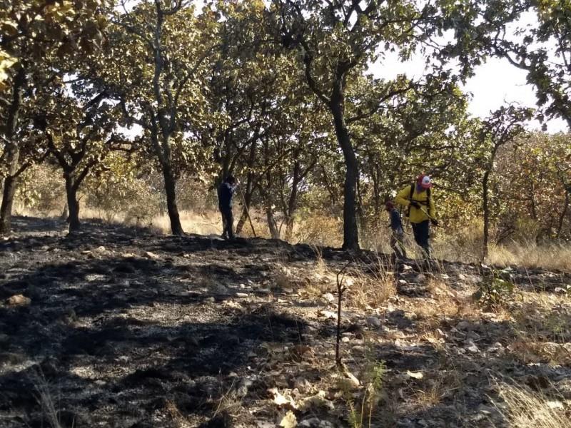 Vinculan a proceso a responsable de incendios en Bosque Nixticuil