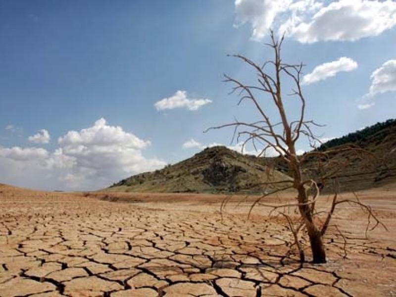 Día de Lucha contra la Desertificación y la Sequía