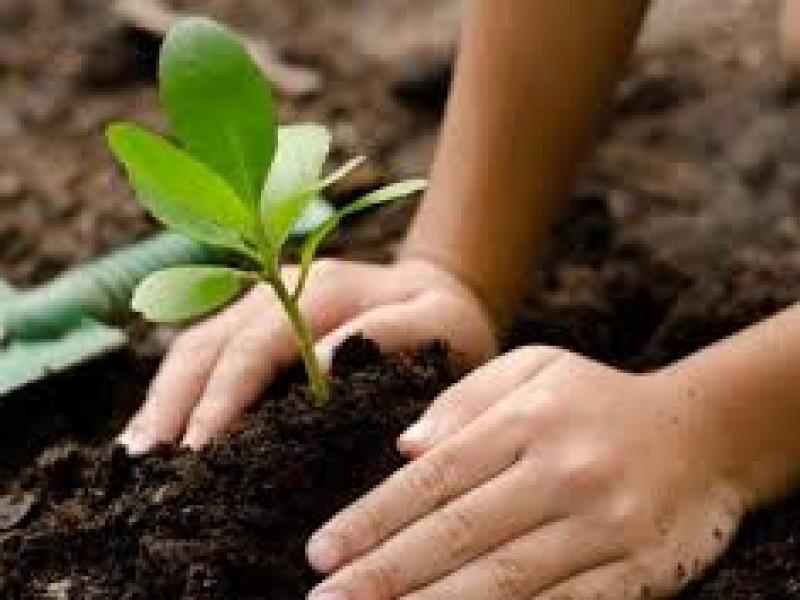 Día Mundial del Suelo para luchar por la gestión sostenible