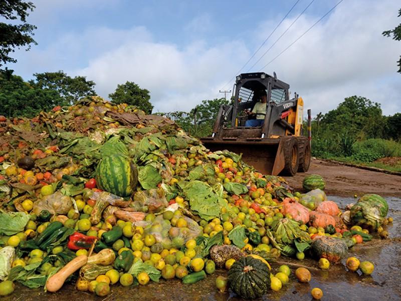 Diariamente se desperdicia 30 mil toneladas de alimento