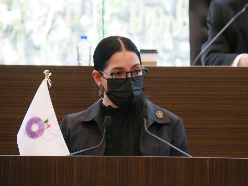Diputada local pide legalidad dentro de consulta popular