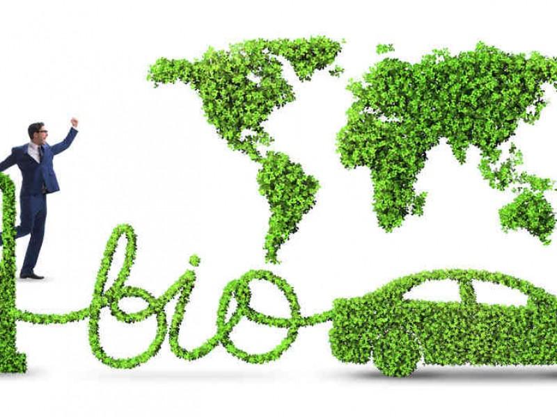Diputada urge a Impulsar el uso de biocombustibles