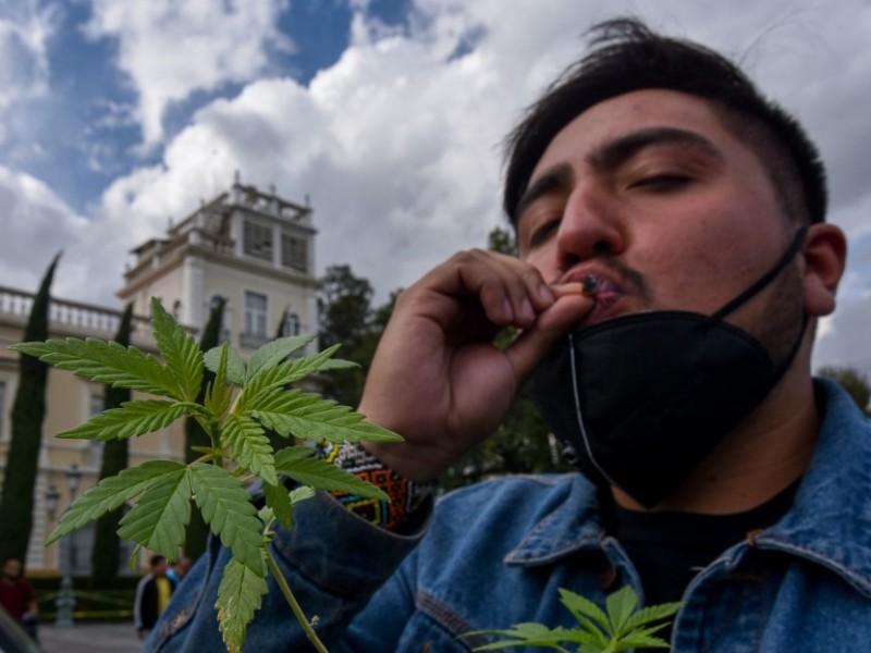 Diputados avalan en lo general uso lúdico de marihuana
