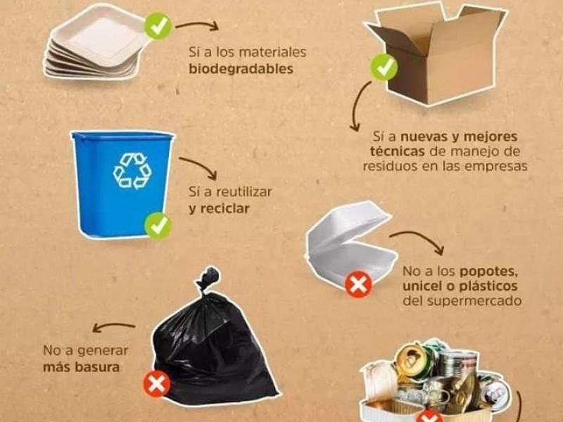 Diputados y Ayuntamientos los que más violan ley anti-plásticos