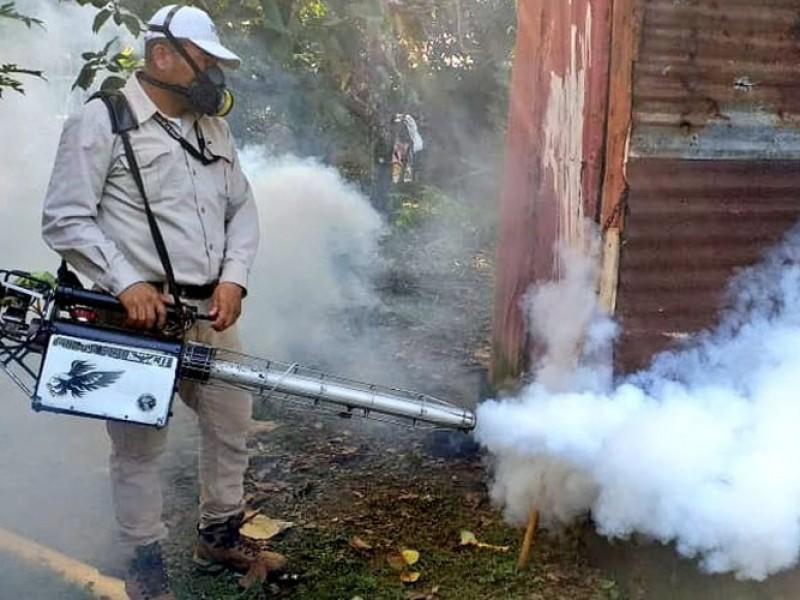 Disminuye incidencia de casos de dengue en Chiapas