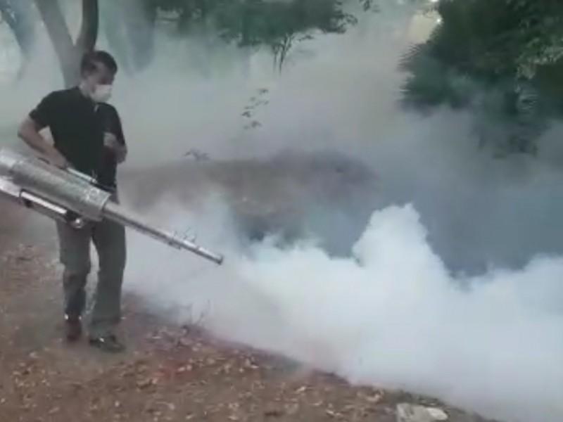 Disminuye la Covid pero vienen casos de dengue y Chikungunya