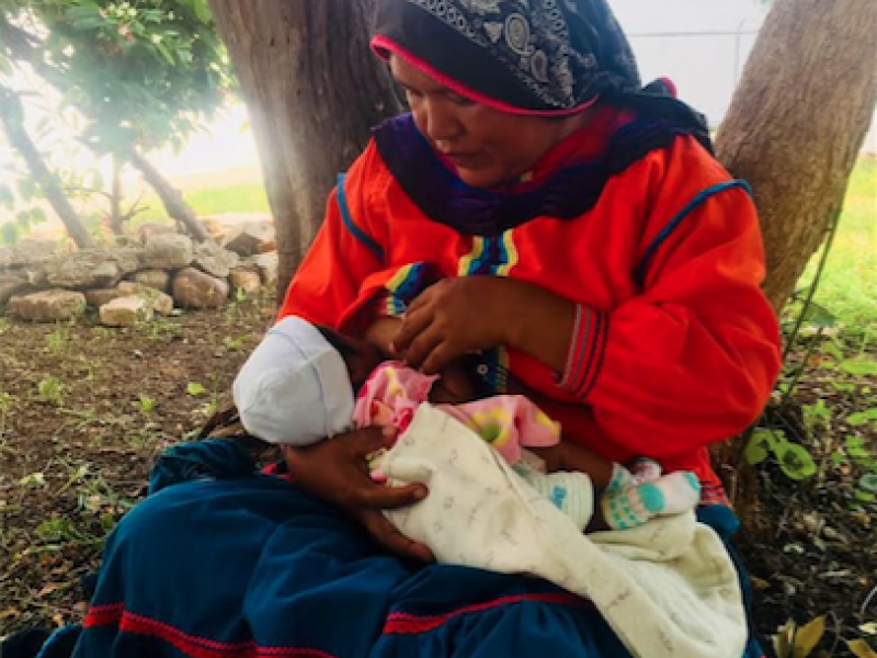 Disminuye la lactancia materna por temor al COVID-19