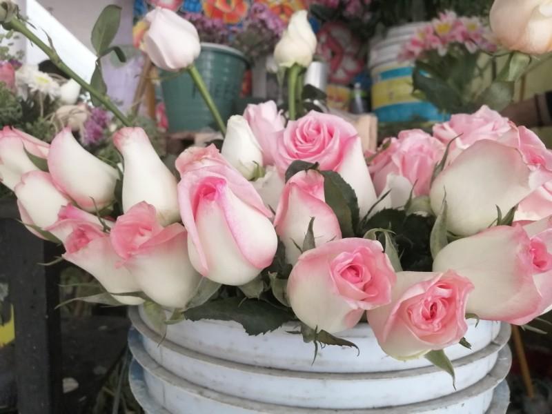 Disminuye producción de flor hasta 40 por ciento