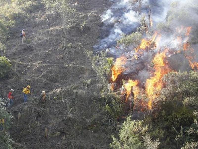 Disminuyen incendios forestales en 2020 en Querétaro