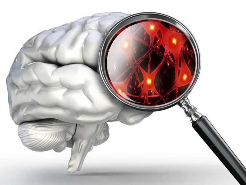 Divide opiniones estudio psicológico de gobernantes