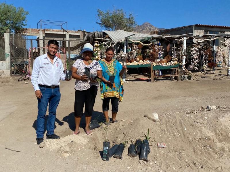 Dona Ecología plantas a Santa Clara y las Guásimas