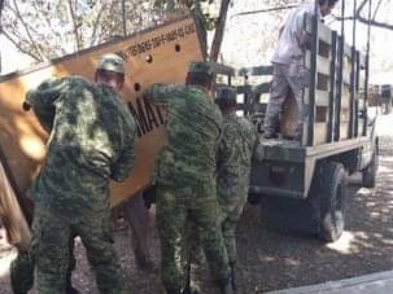Dos nuevos jaguares llegan al ZooMAT