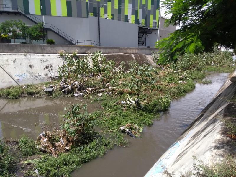 Drenes y canales sucios en Corregidora