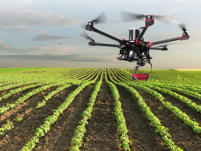 Drones Agrícolas: El futuro del Valle del Mayo