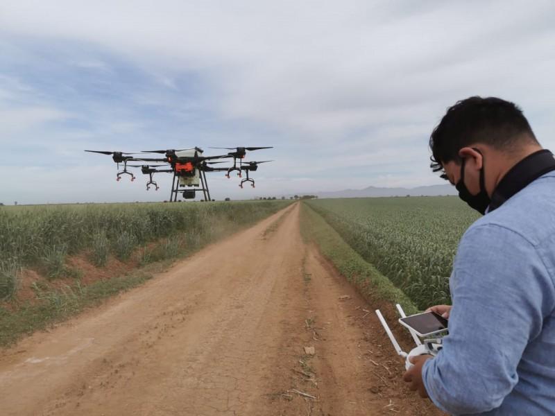 Drones, una tecnología en aplicación de agroinsumos en el campo