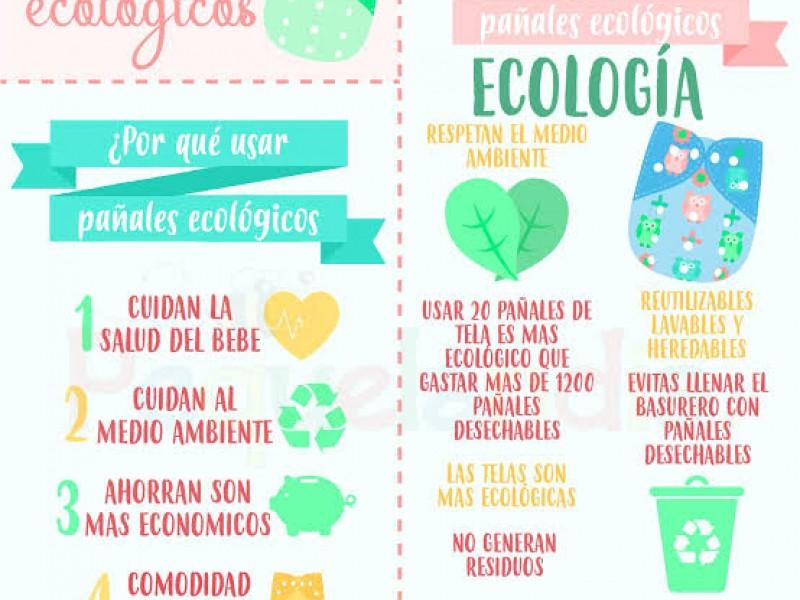 Eco Estación: proyecto ecológico