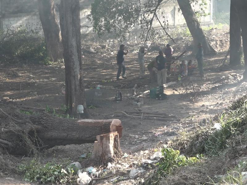 Ecologistas exigen intervención de PROFEPAante daño ambiental en Tehuantepec