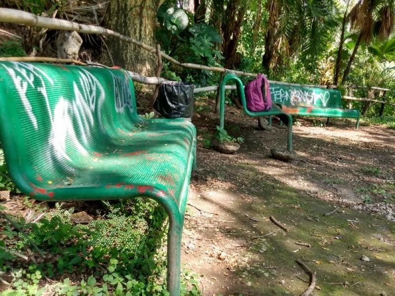 Ecologistas pintan bancas grafiteadas del zanjón de San Juan