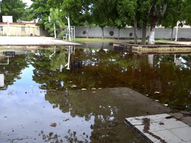 En Ahome 17 escuelas solicitaron apoyo tras daños por
