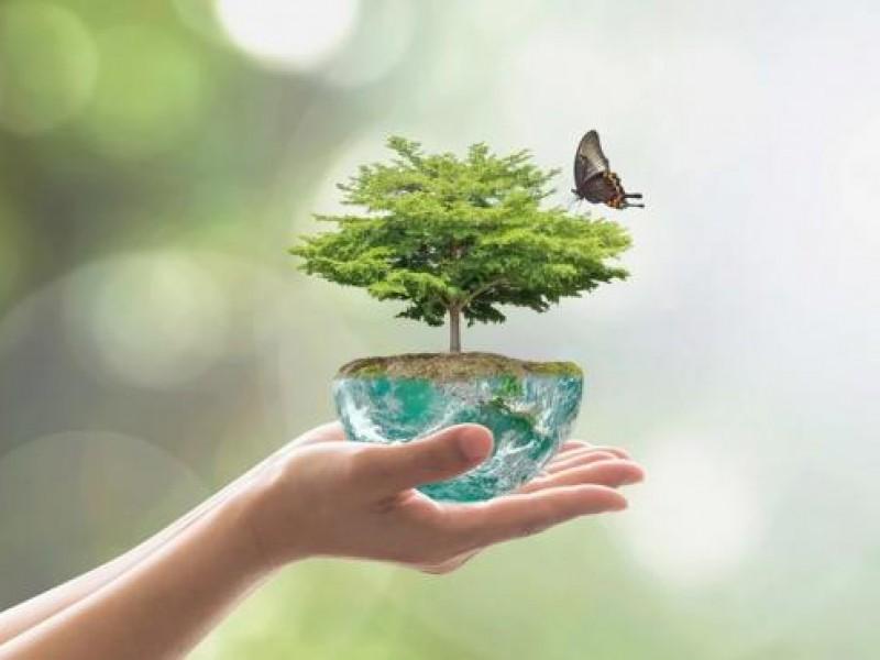 El cuidado de la tierra es tendencia en este 2021