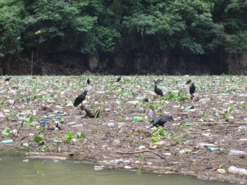 El Grijalva, el río más contaminado de México