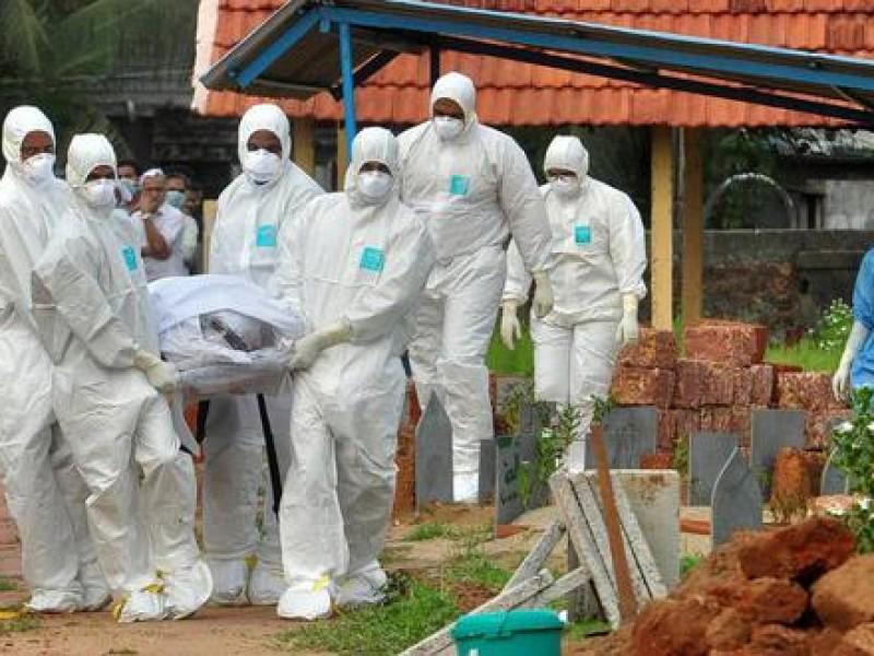El virus Nipah podría ser la peor pandemia: alerta experto