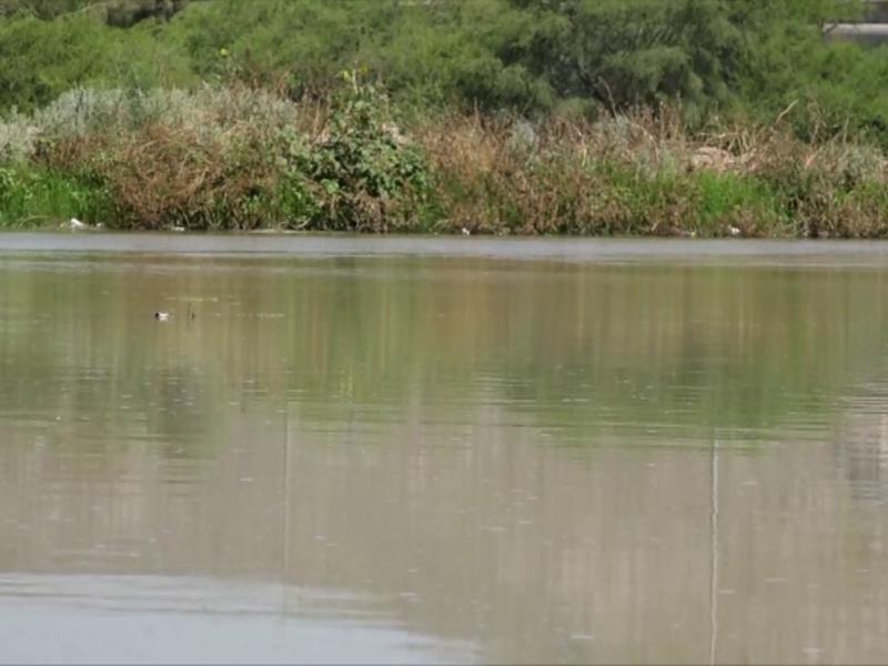 Empresarios ven viable Agua Saludable sin daño ambiental