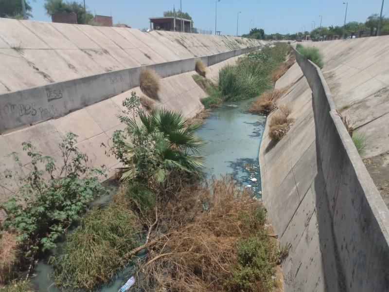 Empresarios y ciudadanos exigen la limpieza del Dren en Navojoa