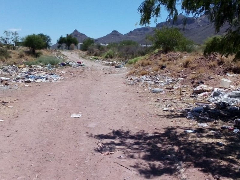 En aumento basureros clandestinos