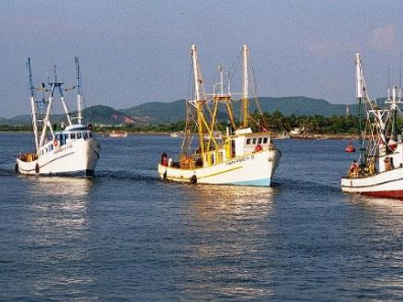 En paro técnico la industria sardinera