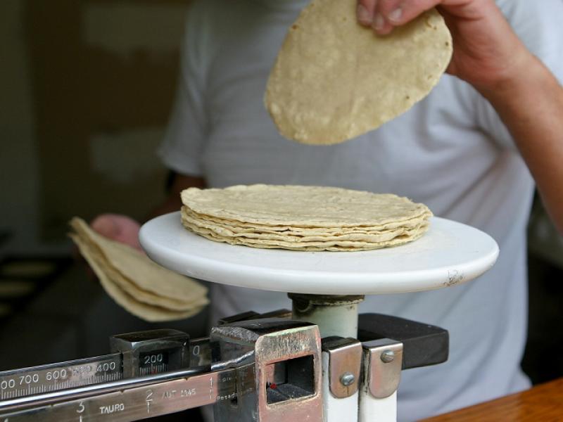 En próximos meses podría elevarse costo de tortilla