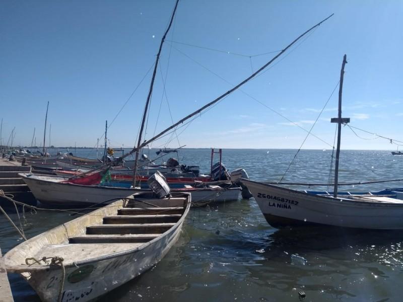 En riesgo, sustento de 30 mil familias pesqueras