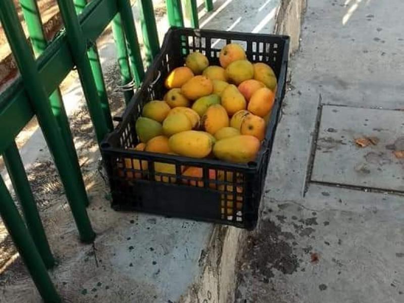 En tiempos de COVID-19 regalan mangos de Joyyo Mayu