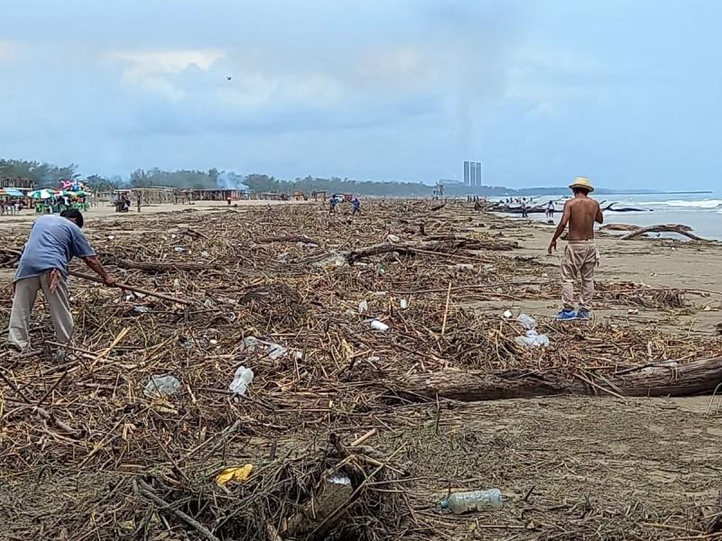 En Tuxpan, pobladores trabajan en el retiro de la palizada