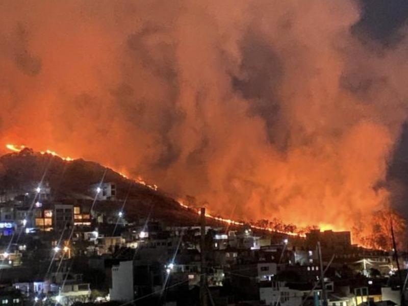 En un mes incendios forestales consumen 5500 hectáreas en Oaxaca